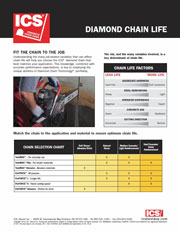 ICS Diamond Chain Life Tip Sheet
